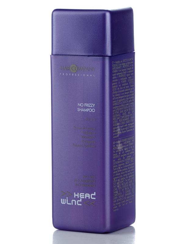 Шампунь разглаживающий - Hair Company Head Wind, 2000 мл