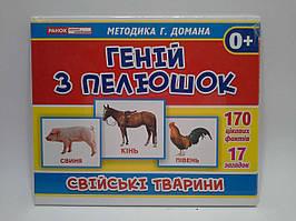 Світогляд Геній з пелюшок Свійські тварини Методика Домана 13107043У 1025-2