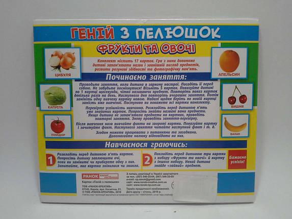 Світогляд Геній з пелюшок Фрукти та овочі Методика Домана 13107046У 7017-2, фото 2