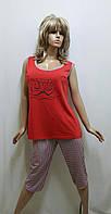 Пижама большого размера майка и бриджи хлопок 227, фото 1