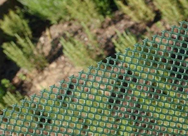 """Сетка для ограждения TENAX  """"Аири"""" 13х13 мм ( 1х30м)"""