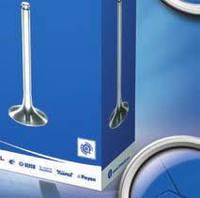 Клапан впускний CHEVROLET LACETTI (J200) 1.6, AVEO (виробництво AE)