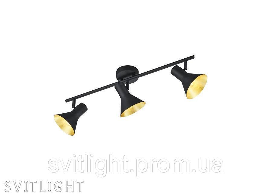 Настенно-потолочный светильник R80163002 TRIO