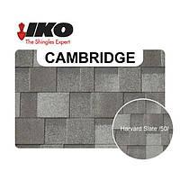 Кровля - IKO Cambridge Xpress , Xtreme Качественная двухслойная битумная черепица
