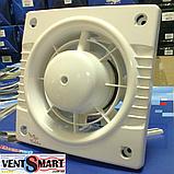 Вытяжной вентилятор Колибри 100 (Colibri 100), фото 2