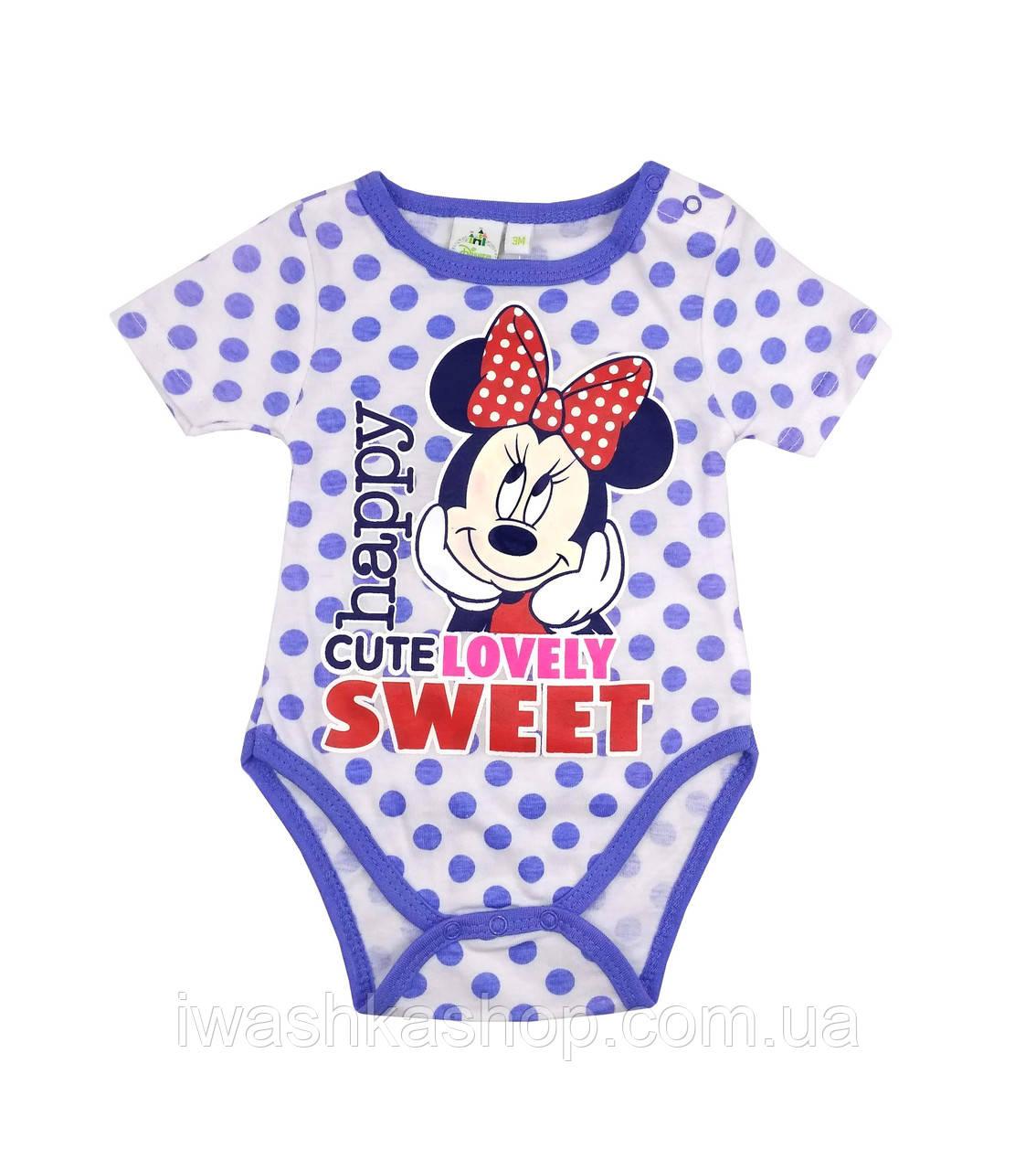 Белое боди в горох, с коротким рукавом на девочек 18 месяцев, р. 81, Disney baby