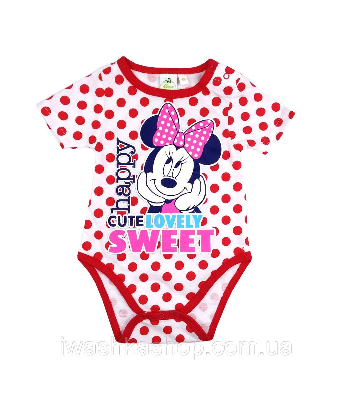 Белое боди в горох, с коротким рукавом на девочек 3 месяцев, р. 60, Disney baby