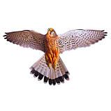 """Визуальный отпугиватель птиц """"Хищник-3"""" (Пустельга), фото 2"""