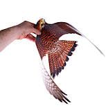 """Визуальный отпугиватель птиц """"Хищник-3"""" (Пустельга), фото 3"""