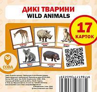 Дикі тварини. 17 карток