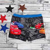 Плавки Cars для мальчика. 98-104;  110-116;  122-128 см, фото 1