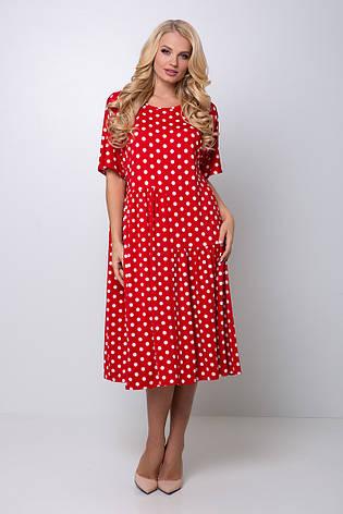Красное платье в горошек большой размер Элена, фото 2