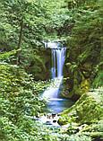 Фотообои из Швейцарии Весенний водопад Код: 364, фото 3
