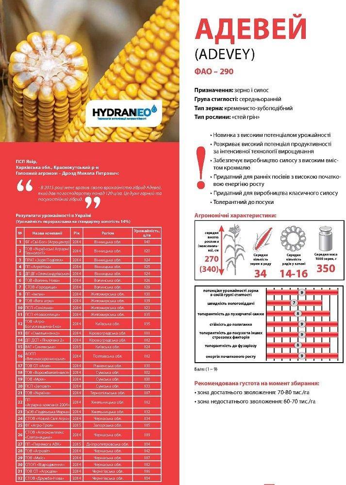 Семена кукурузы Лимагрейн Адевей (ADEVEY) ФАО – 290