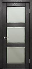 Двери Status Platinum Trend Premium TP-022.F Полотно+коробка+2 к-кта наличников+добор 100мм, фото 3
