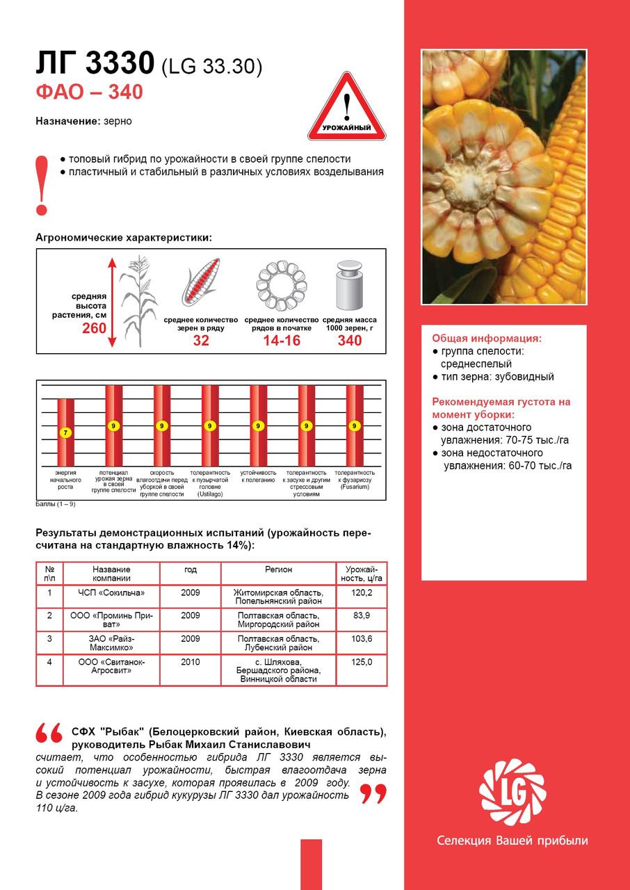 Семена кукурузы Лимагрейн ЛГ 3330 (LG 33.30) ФАО – 340