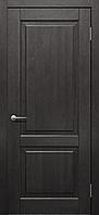 Двери Status Platinum Trend Premium TP-031 Полотно