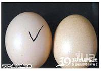 Китайцы уже подделывают и яйца!!!