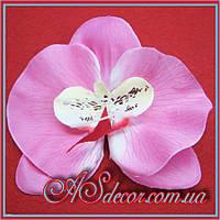 Головка орхидеи 12 см розовая