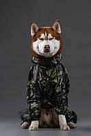 Одежда Комбинезон для Собак крупных пород  HUNTER,дождевик большая собака, камуфляжный