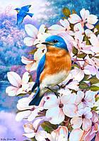 Картина по номерам Весна пришла