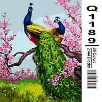 """Картина по номерам, картина-раскраска """"Павлины на ветке сливы"""" 40Х50см Q1189"""