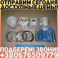 ⭐⭐⭐⭐⭐ Поршень цилиндра  ВАЗ 21011 79,0 (E) (поршень+палец+поршн.кольца) М/К (про-во АвтоВАЗ)