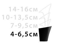 Каблук женский 4-6.5 см