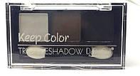 Тени DoDo Trio Keep Color - 3 цвета (Палитрами по 3 шт.  А (№1,2,3) ; В (№4,5,6)   3044D
