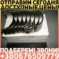⭐⭐⭐⭐⭐ Вкладыши шатунные Н1 Д 65 АО20-1 (производство  ЗПС, г.Тамбов)  А23.01-81-65сбБ1