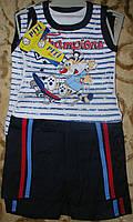 """Костюм майка+шорты  коттон """"тигренок""""для мальчика  86-98"""