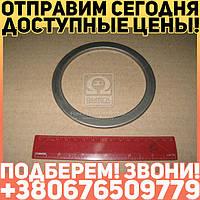 ⭐⭐⭐⭐⭐ Маслоотражатель вала коленчатого задний Д 260 (производство  мм З)  260-1005044