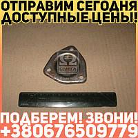 ⭐⭐⭐⭐⭐ Крышка люка крышки распределения шестерен Д 240,243,245 (производство  мм З)  240-1002062