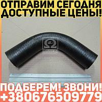 ⭐⭐⭐⭐⭐ Патрубок радиатора МТЗ L=270 верхний (Руслан-Комплект)  70-1303001