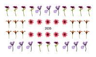 Слайдер-дизайн 2035 X-Ray, Вуаль, Акварель, Цветы