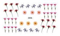 Слайдер-дизайн 2036 X-Ray, Вуаль, Акварель, Цветы