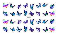 Слайдер-дизайн 2077 X-Ray, Вуаль, Акварель, Цветы