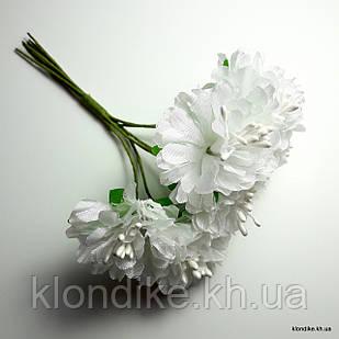 Букетик пион, Цвет: Белый