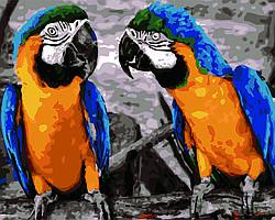 Картина по номерам Два попугая, 40x50 см., Домашнее искусство