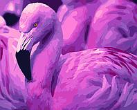 Картина по номерам Розовый фламинго, 40x50 см., Домашнее искусство