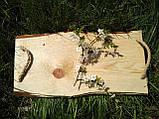 Поднос деревянный, фото 3