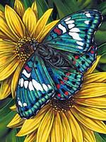 Алмазная мозаика Бабочка на гербере 30x40см DM-178 Полная зашивка. Набор алмазной вышивки