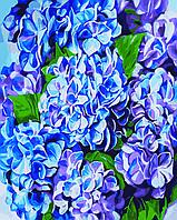 Картина по номерам Яркая гортензия, 40x50 см., Идейка