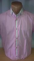 Элегантная Мужская рубашка FGC приталенная с коротким рукавом цветным воротником и рукавами