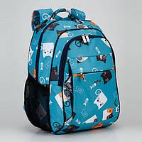"""Рюкзак школьный ортопедический девочке в 1-5 класс голубой с модным принтом """"Котята"""" Dolly 538, фото 1"""