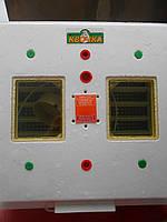 Инкубатор Квочка МИ-30-1-Э (Ламповый)