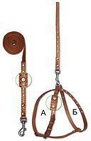 Комплект шлейка и поводок для декоративных пород 10 мм украшенный
