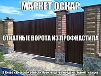 Відкатні ворота з профнастилу за найнижчими цінами у Києві та Київській області