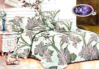 Набор постельного белья №с63 Евростандарт, фото 1
