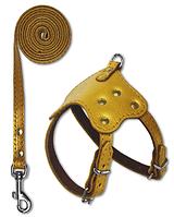 Комплект шлейка и поводок для декоративных пород средняя